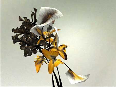 گلهای زیبا و معادلات ریاضی
