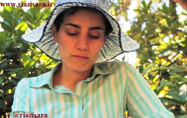 بیوگرافی مریم میرزاخانی