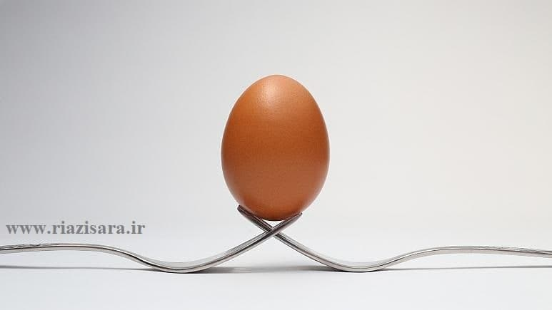 فرمول شکل تخم مرغ